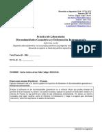 Informe Corto Discontinuidades 201313126Impr
