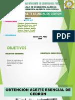 Diapos Del Cedron