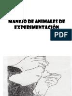 Manejo de Anim. de Exper.(1º Pract.fis)