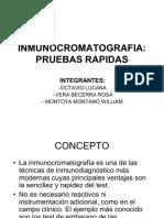 36487446-INMUNOCROMATOGRAFIA-pba-rapida.pdf
