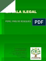 La Tala Ilegal