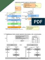 ALGORITMOS de reanimacion neonatal.pdf