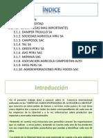 261136281-Analisis-de-Las-Empresas-y-Exportaciones-de-La-Region-Libertad.pptx