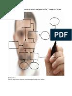 Importancia de Las Funciones Organización, Control y Staff
