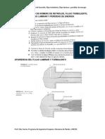 guc3ada-de-estudio-de-nc3bamero-de-reynolds.pdf