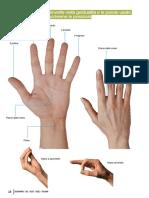 dizionario_dei_gesti_28-29.pdf