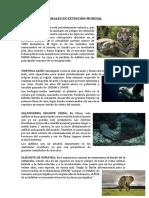 Animales en Extincion Mundial
