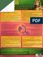 Infografía Jineologia - Poster.pdf