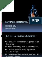 presentacion abdomen
