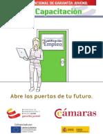PICE - Guía Del Plan de Capacitación