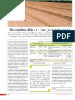 Biocombustibles en Ica, Con Qué Agua