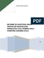 Resumen de La Aplicacion Auditoria13