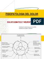 43020902-Fisiopatologia-Del-Dolor-Ppt-Share.ppt