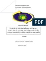 Proyecto Tesis Miriam