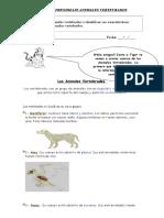 2º-basico-ciencia-GUIA-VERTEBRADOS.doc
