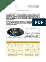 Guia de Organizacion Para El Estudio PDF 1188 Kb