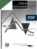 Curso de Microeconomía