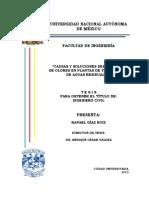 """""""CAUSAS Y SOLUCIONES DEL PROBLEMA DE OLORES EN PLANTAS DE TRATAMIENTO    DE AGUAS RESIDUALES"""""""