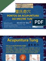 PONTOS EXTRA-MESTRE-TUNG-Marcos-Yau.pdf