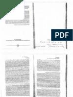 CPE Castells La Politica Informacional