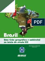 VISÃO_GEO_BR.pdf