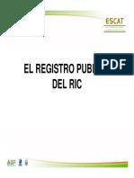 12 PRESENTACION_REGISTRO_PUBLICO.pdf