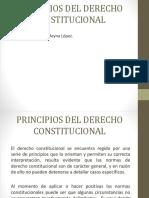 1. Principios Del Derecho Constitucional 2017