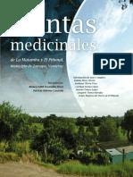 Manual Plantas Medicinales Veracruz Mejico