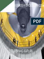 TURBINAS KAPLAN 2010.pdf