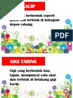 ISTILAH TAHUN 3.pptx