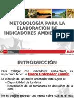 METODOLOGIA PARA ELABORACION DE INDICADORES AMBIENTALES