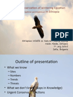 Status of the Egyptian Vulture in Ethiopia.pptx