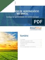 1487617152Unisul Virtual Agronegocio 1 Mercado