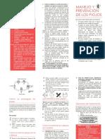 folleto Pediculosis