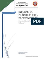 Informe+de+Practicas+Pre+Profesionales