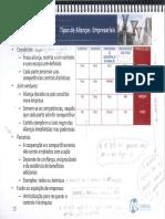 Rogério - Tipos de alianças.pdf