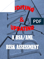 Auditing Updating an AML Risk Assessment Donna Davidek