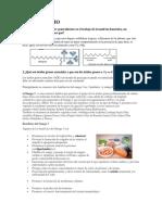Quimica Practica 12 Lipidos