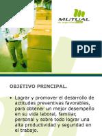Actitudes Preventivas_2010.ppt