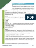 0130698_TC 2012_Orientacoes Gerais 2.pdf