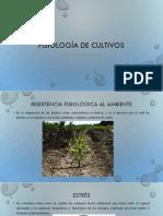 Fisiología de cultivos.pptx