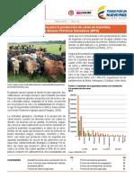 Carne en Colombia Dane