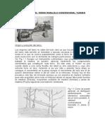 -Historia-Del-Torno-Paralelo.doc