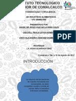 1.- EQUIPO STICH EL ORIGINAL TABASQUEÑO.pptx