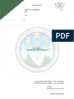 Practica2-Superficiesequipotenciales.pdf