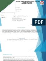 Diaspositivas (YNPQ)