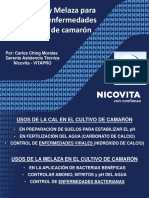 11 Carlos Ching