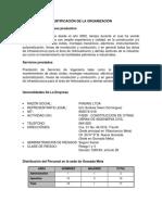 Identificación de La Organización Empresa Piasing Ltda