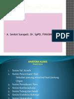 Anatomi System