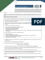 INDICACIONES PPP2.pdf